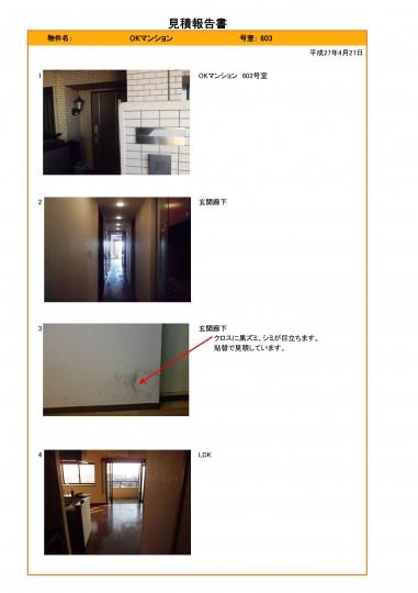 image-0002-381x540
